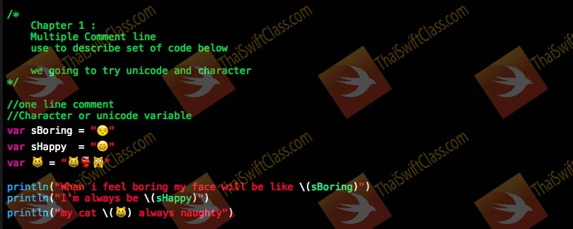 ThaiSwiftclass swift for beginner picture coding